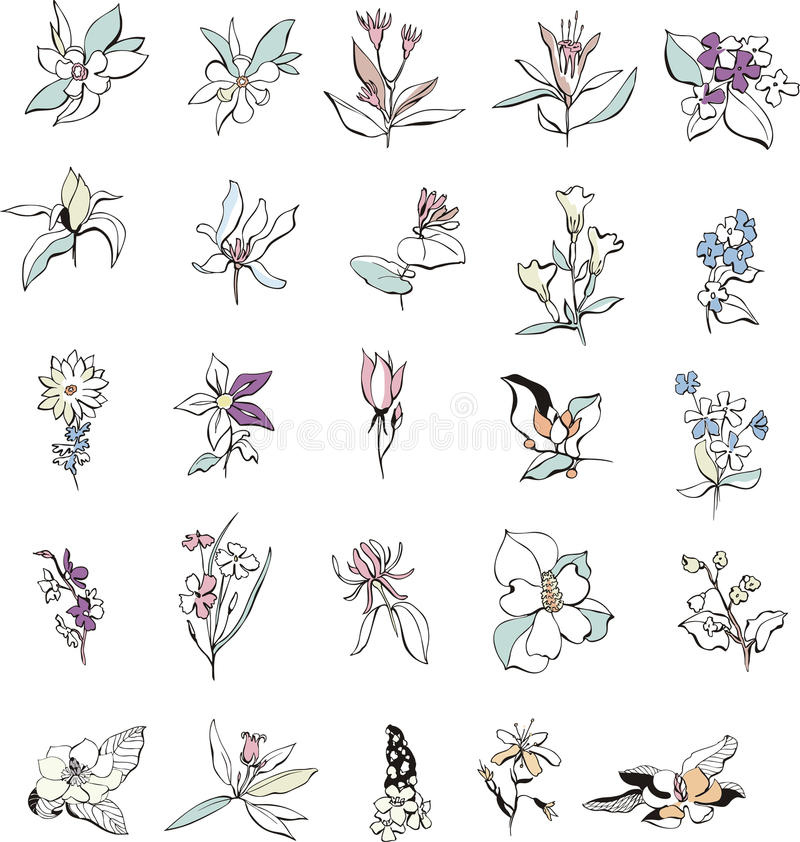 Download Simple Flower Sketches Royalty Free Stock Photography - Image: 33917777