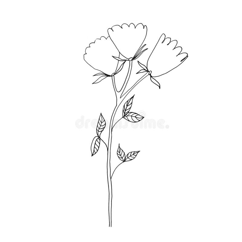 Simple Flower Drawing Stock Illustrations 36 342 Simple Flower