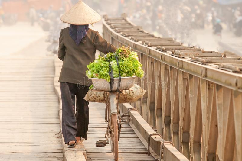 Simple life. Rear view of Vietnamese women with bicycle across the wooden bridge. Vietnamese women with Vietnam hat, vegetable on stock images