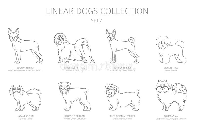 simple line dogs collection isolated white dog breeds flat style clipart set simple line dogs collection isolated white dog