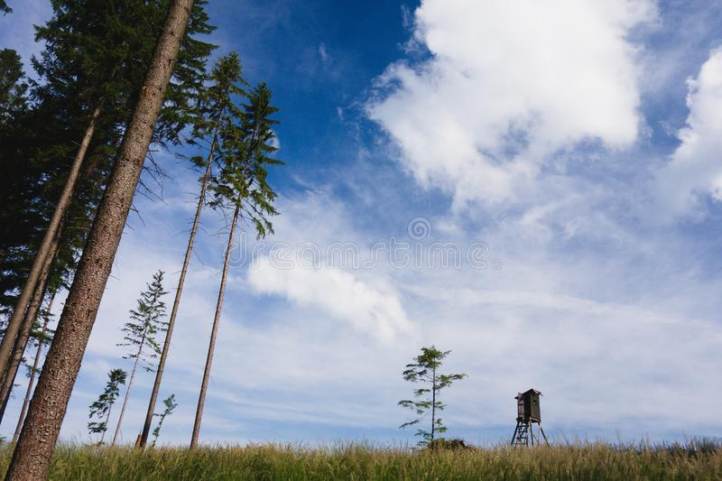 Simple minimalist forest landscape scenery with wooden hide tower, grass field and tree stock photography