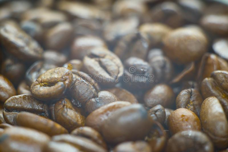Photo of a fresh coffee beans royalty free stock photos