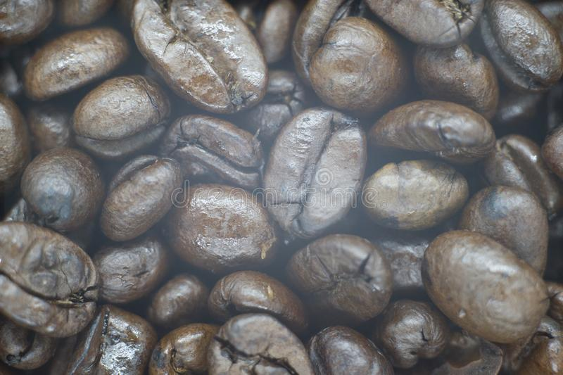 Photo of a fresh coffee beans royalty free stock photo