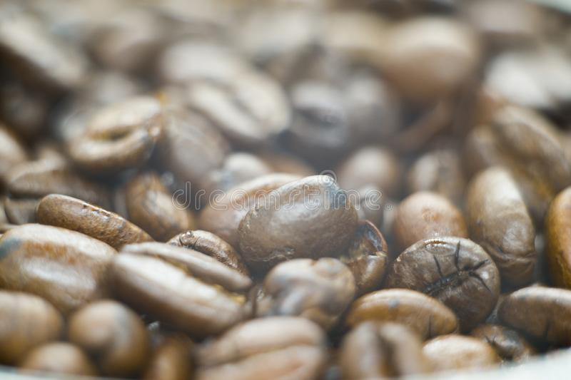 Photo of a fresh coffee beans stock photos