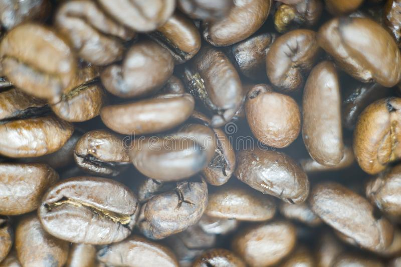 A picture of a fresh coffee beans royalty free stock images