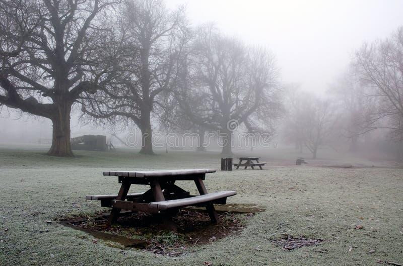 Simple parque de Diss Norfolk en invierno imagen de archivo