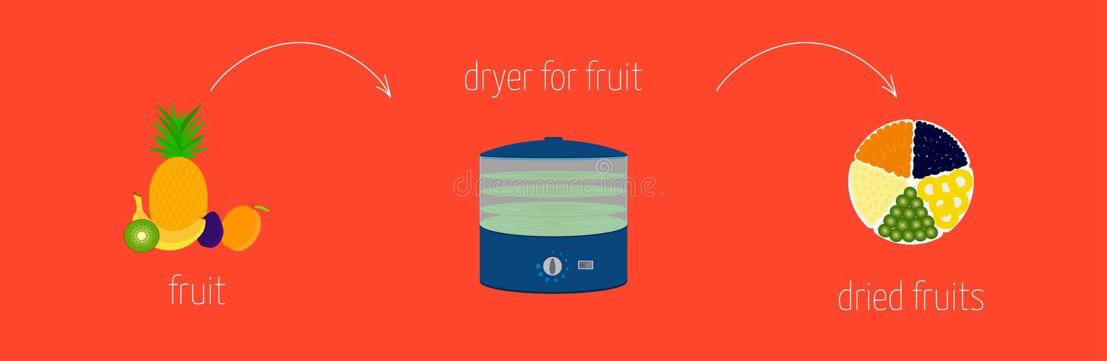 Simple recipe instructions on how to make dried using a dryer for fruits and vegetables.  vector illustration