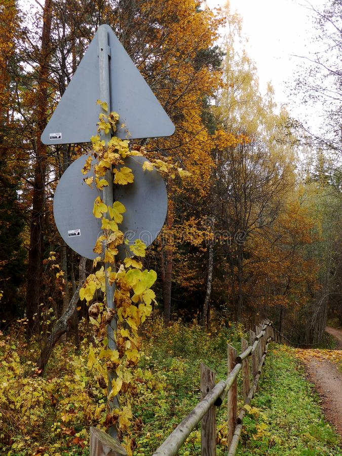 Simple signs overgrown with creepers. Autumn colors stock photography