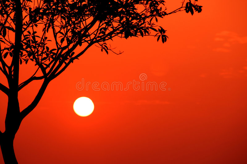 Simple Sunset stock images