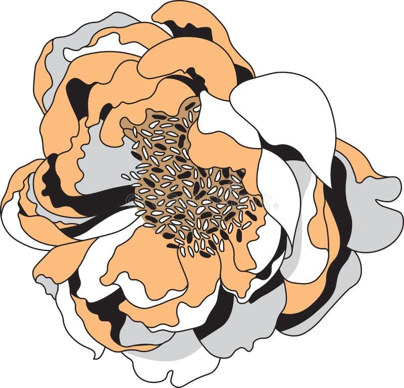 Simple Vector Clip Art Peony Flower image. Peony Vector Clip Art Flower image vector illustration