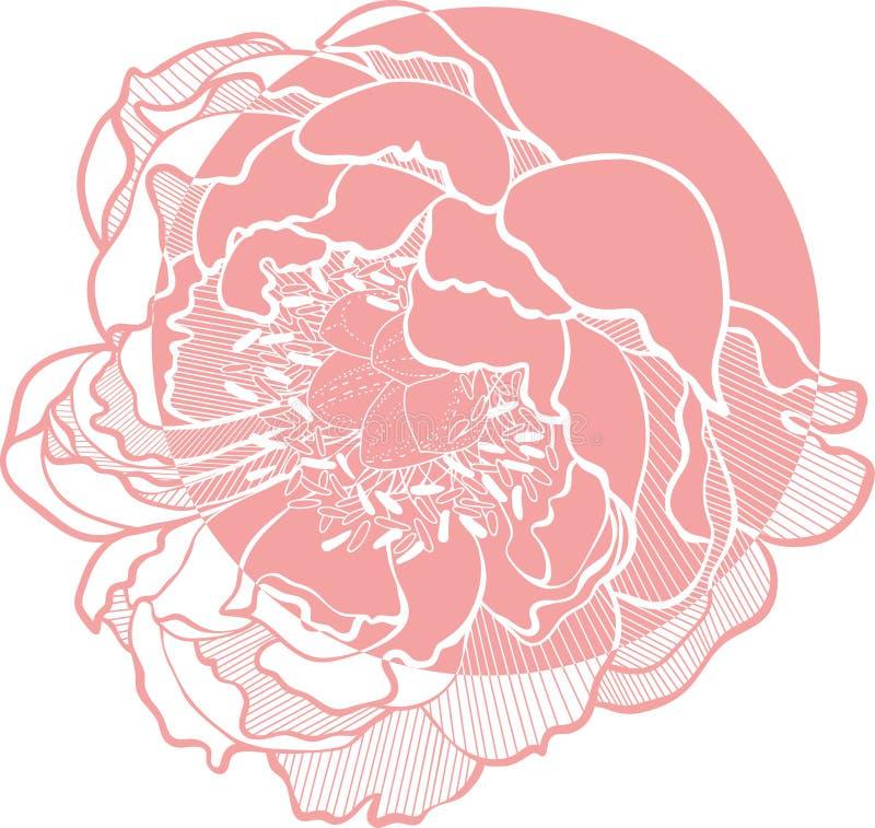 Simple Vector Clip Art Peony Flower image. Peony Vector Clip Art Flower monohrom image stock illustration