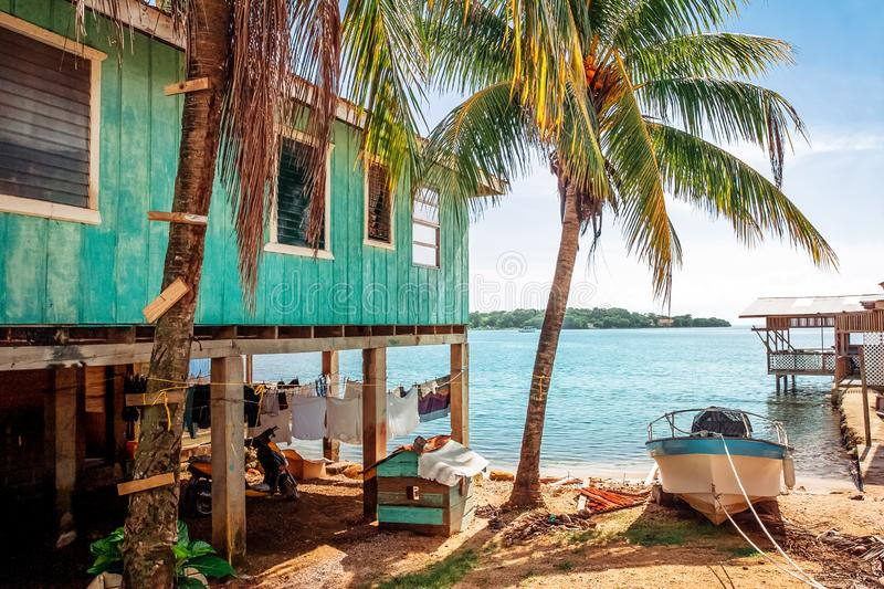Simple wooden colorful house set on the wooden pillars next to the palm trees. royalty free stock image