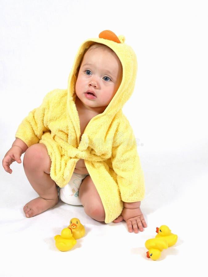 Simply Ducky royalty free stock photos