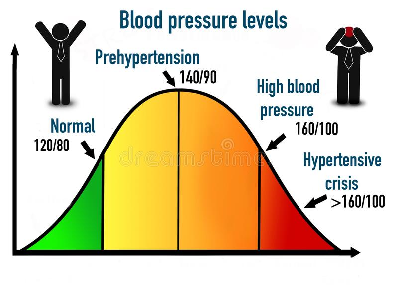 Blood Pressure Performance Scale Educational Sheet Stock Photo