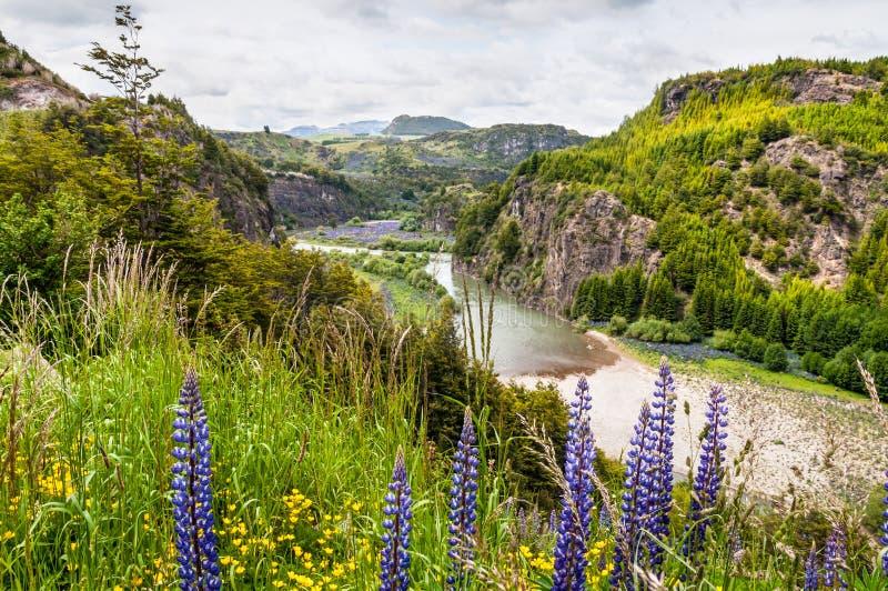 Simpson River Valley, Patagonia, Chile. Día cubierto. fotografía de archivo libre de regalías