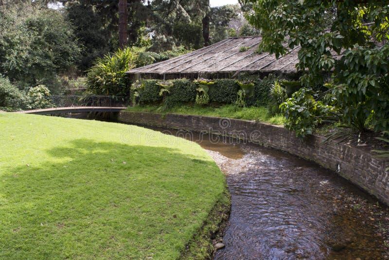 Simpson Shadehouse Adelaide Botanic Garden Photographie U00e9ditorial - Image Du Courses Cu00f4tu00e9 ...