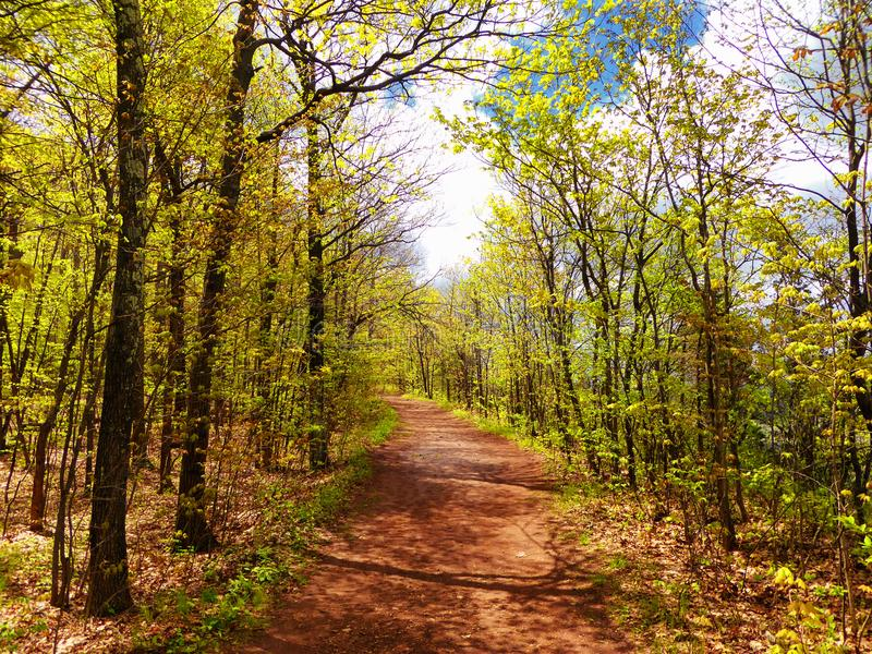 Simsbury hiking trail. A trail inside simsbury woods in Torrington Connecticut united states stock image