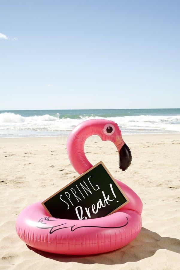 Simsen Sie Frühjahrsferien in einem Schild auf dem Strand lizenzfreie stockbilder