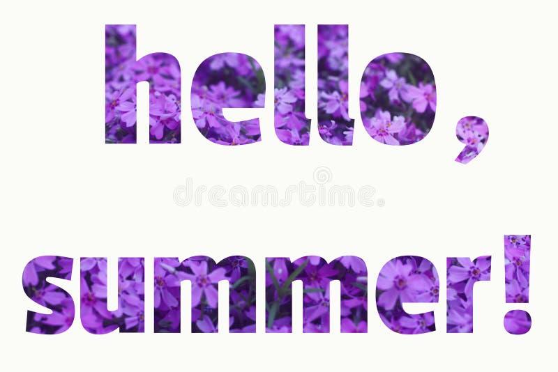 Simsen Sie HALLO DEN SOMMER, der vom purpurroten Sommerblumenhintergrund gemacht wird lizenzfreie stockbilder