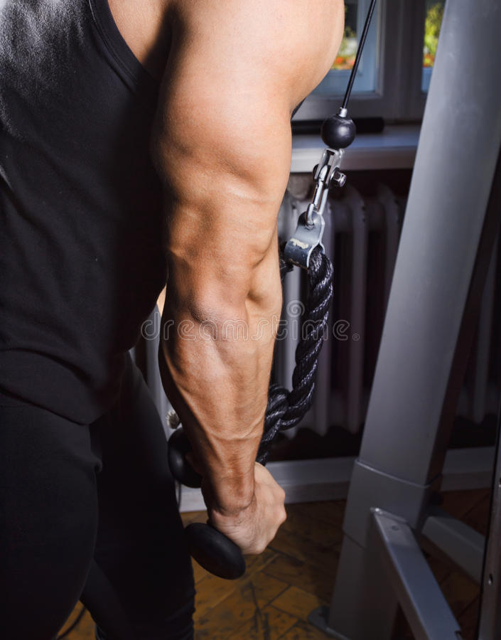 Simulator For Triceps Stock Photos