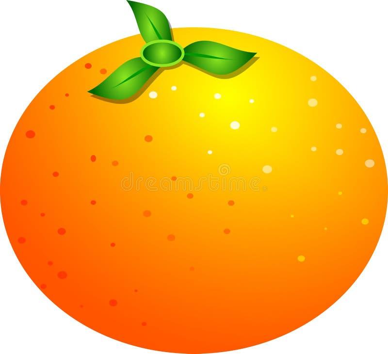 Download Sinaasappel stock illustratie. Illustratie bestaande uit voedsel - 29853