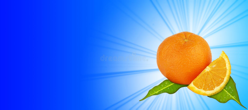 Sinaasappel - blauwe achtergrond stock illustratie