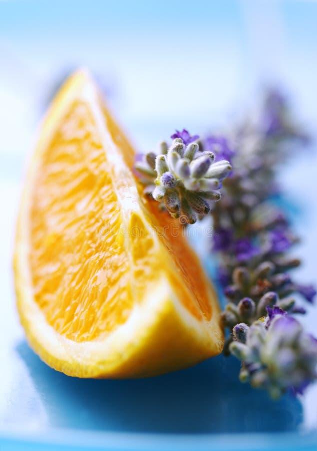 Sinaasappel en lavendel royalty-vrije stock afbeeldingen