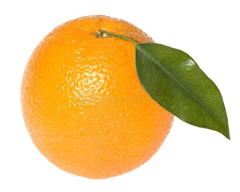Sinaasappel met blad royalty-vrije stock foto's