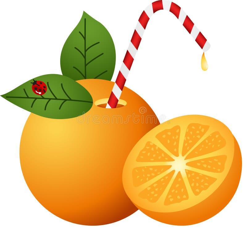 Sinaasappel met Stro vector illustratie