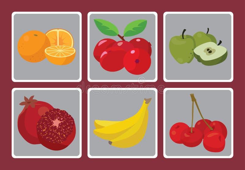 Sinaasappelen, bananen, perziken, appelen, Granaten, Amerikaanse veenbessen vector illustratie