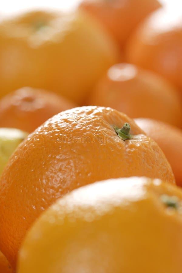 Sinaasappelen en mandarijnen stock afbeeldingen