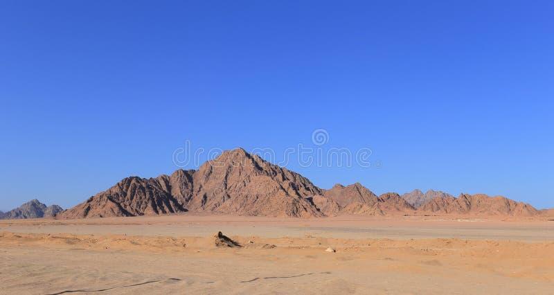 Sinai mountains. In the desert in Egypt royalty free stock photos
