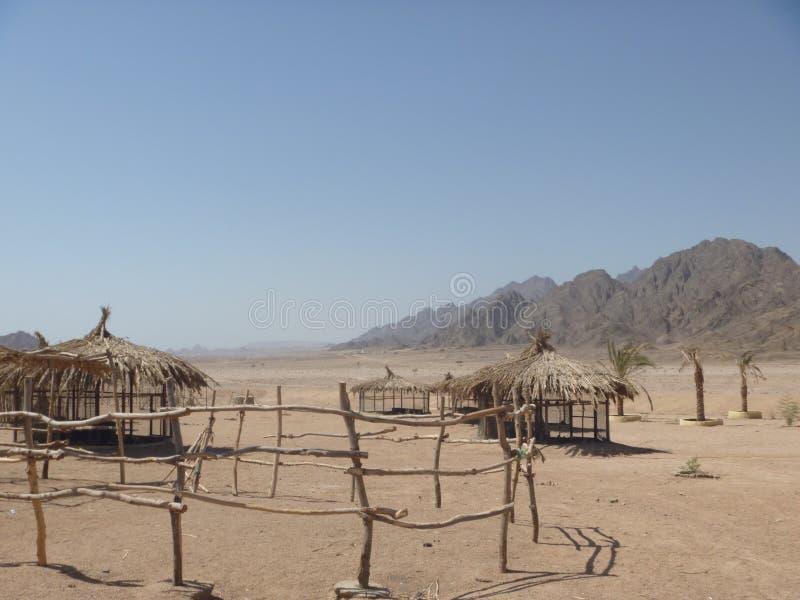 sinai woestijn royalty-vrije stock foto