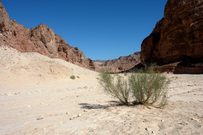 Sinai woestijn, Gekleurde Canion royalty-vrije stock afbeeldingen