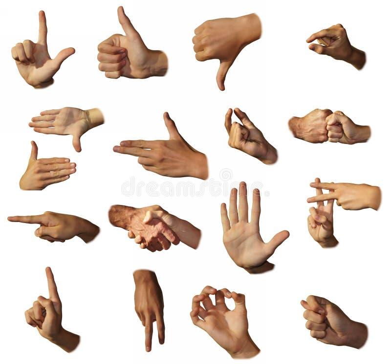 Sinais da mostra das mãos. Gesticulation. fotografia de stock royalty free