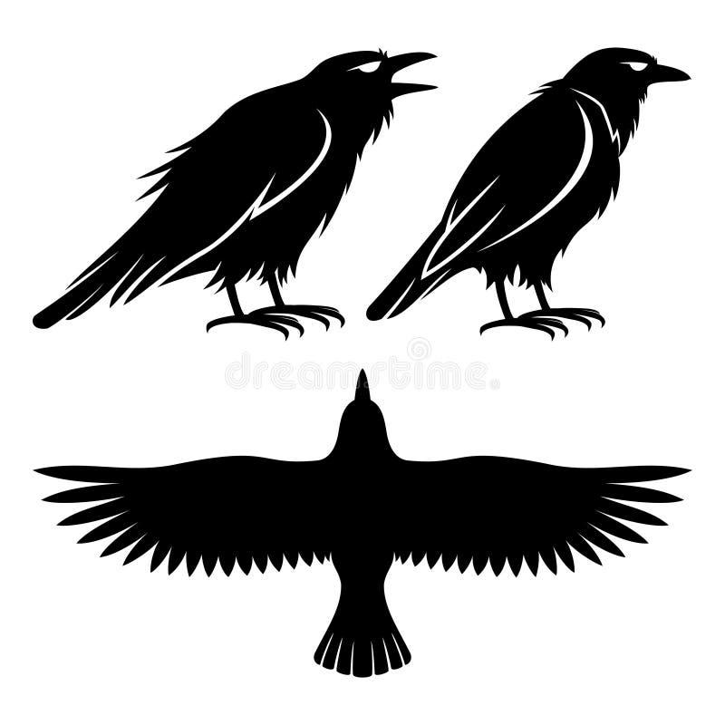 Sinais pretos do corvo ilustração royalty free