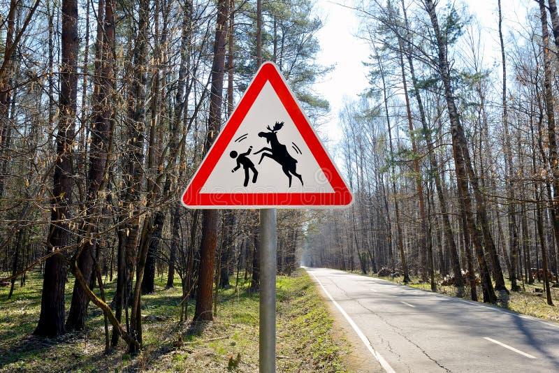 Sinal aproximadamente de alces selvagens em uma estrada de floresta foto de stock royalty free