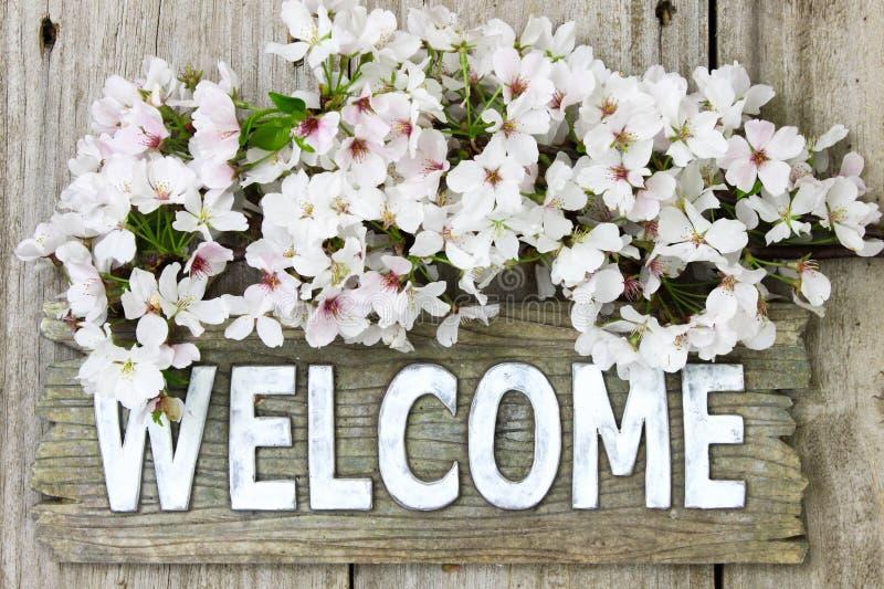 Sinal bem-vindo com o ramalhete da mola das flores brancas imagens de stock