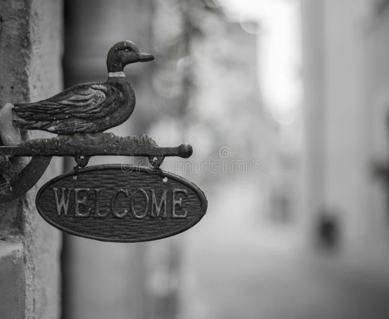 Sinal bem-vindo com pato imagem de stock royalty free