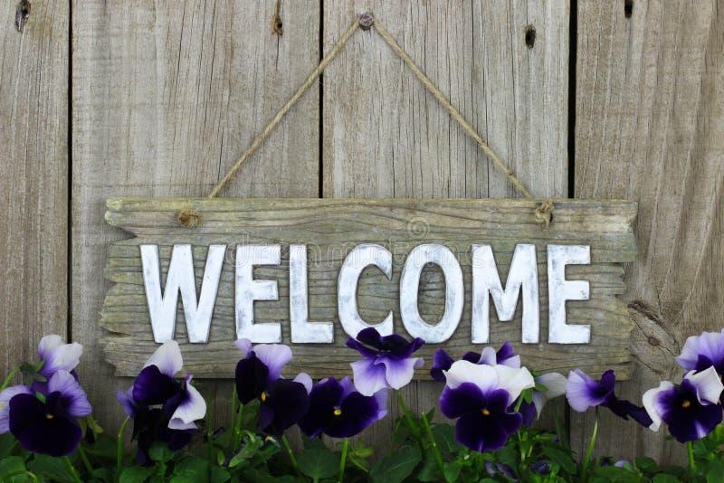 Sinal bem-vindo de madeira com flores roxas (pansies) fotografia de stock