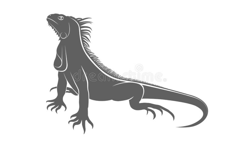 Sinal cinzento da iguana ilustração royalty free