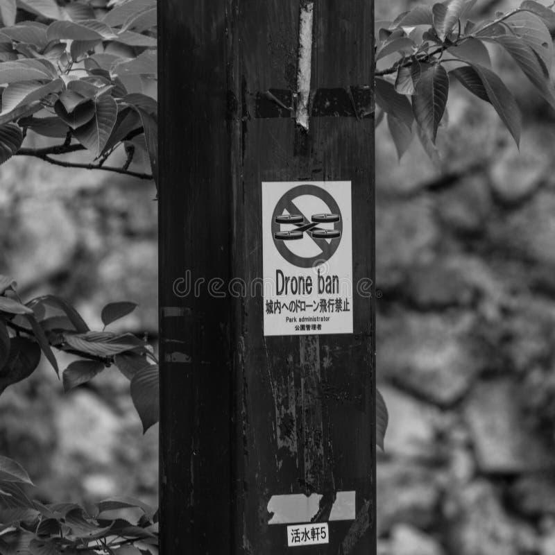 Sinal com 'a rotulação da proibição do zangão ', escrita em palavras inglesas e japonesas foto de stock royalty free