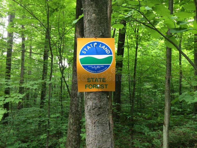 Sinal da floresta dos Estados de Nova Iorque fotos de stock royalty free