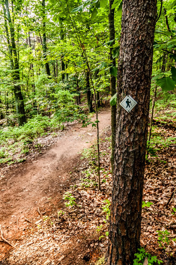 Sinal da fuga de caminhada na floresta fotografia de stock