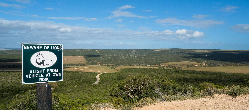 Sinal de aviso animal no parque de Addo Elephant em África do Sul imagem de stock royalty free