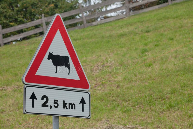 Sinal de estrada de advertência para a presença animal por muito tempo uma rua italiana da montanha imagem de stock