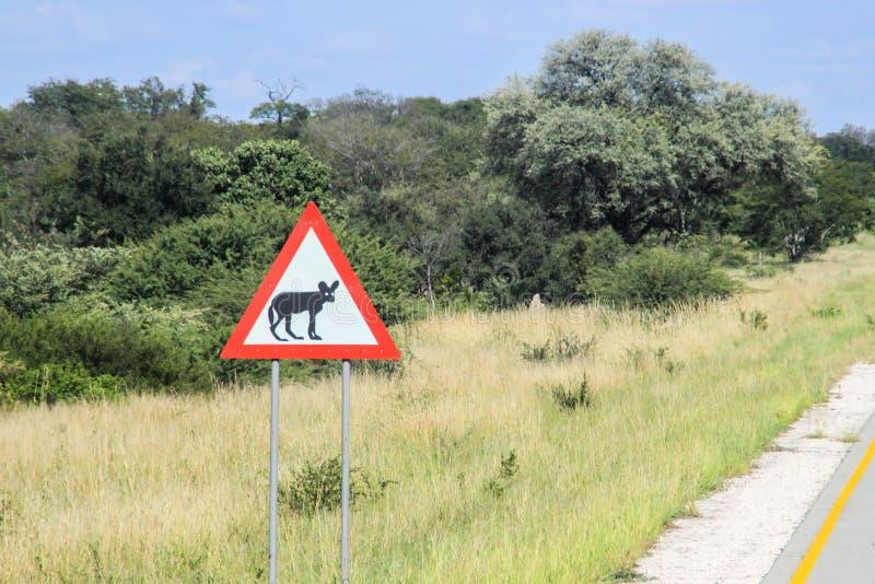 Sinal de estrada africano que descreve um animal - uma hiena na estrada foto de stock royalty free