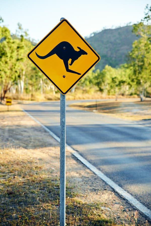 Sinal de estrada de advertência que mostra uma forma do canguru imagem de stock