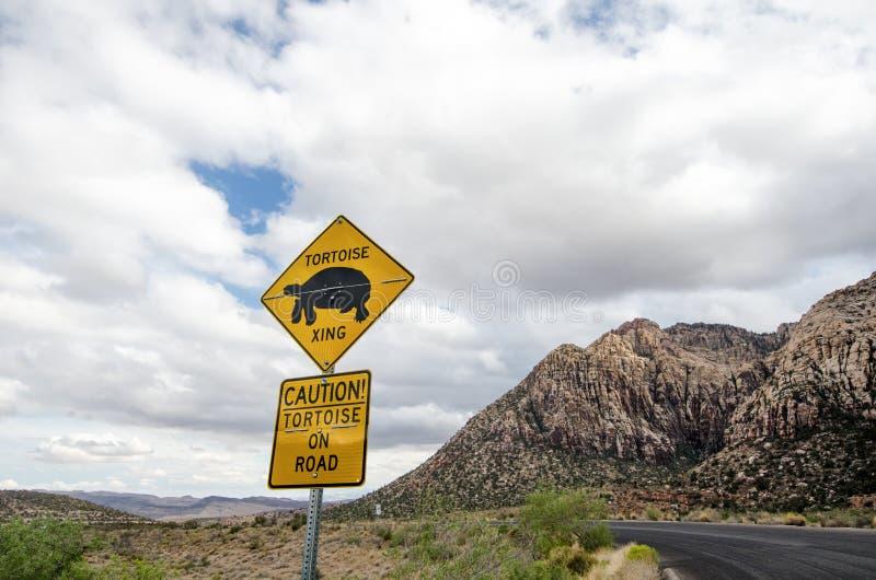 Sinal de estrada para o cruzamento da tartaruga da tartaruga de deserto, motoristas de advertência da presença animal foto de stock royalty free