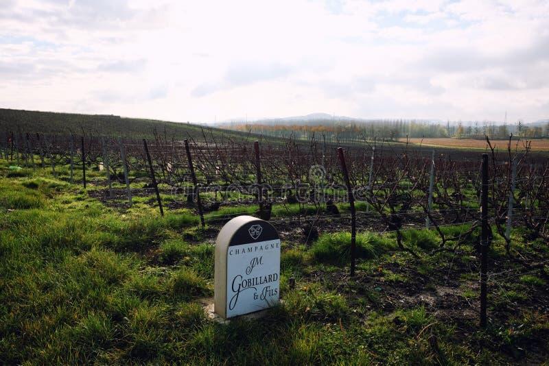 Sinal de pedra dos vinhedos de JM Gobillard e Fils em Hautvillers imagem de stock